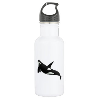 Killer Whale, Orcinus Orca Stainless Steel Water Bottle