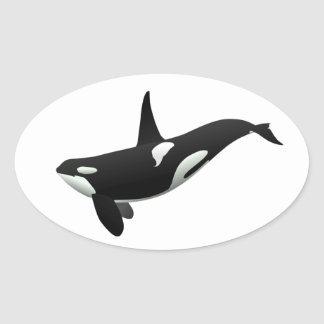 Killer Whale, Orcinus Orca Oval Sticker
