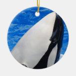 Killer Whale Ornament