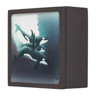 Killer Whale painting Jewelry Box