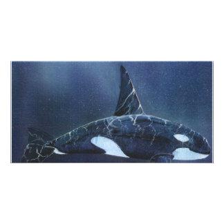 Killer Whale Photo Card