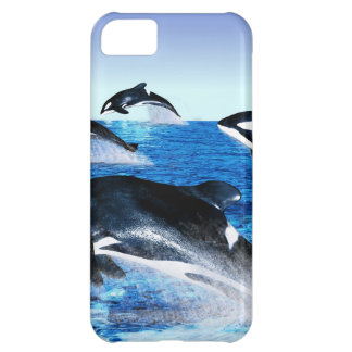 Killer Whale Pod iPhone 5C Cases