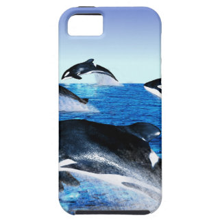 Killer Whale Pod iPhone 5 Covers