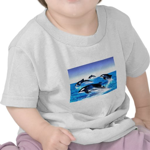 Killer Whale Pod T-shirts