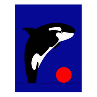 Killer Whale Post Card