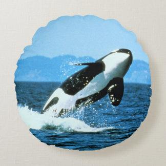 Killer Whale Round Pillow