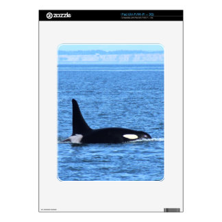 Killer Whale Skins For The iPad