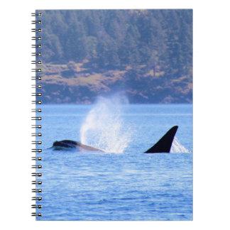 Killer Whale Spiral Notebook