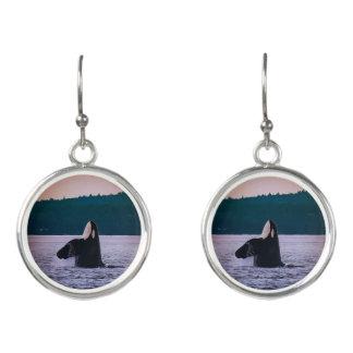 Killer Whale spyhop dangle earrings