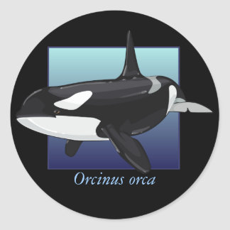 Killer Whale Sticker