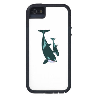 Killer Whales iPhone 5 Covers
