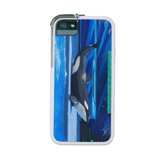 Killer Whales Cover For iPhone 5