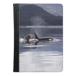 Killer Whales iPad Air Case