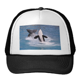 Killer whales jumping out of water trucker hat