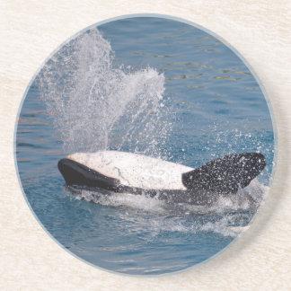 Killer whales on the back sandstone coaster