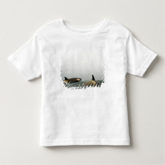 killer whales (orcas), Orcinus orca, pod 2 Toddler T-shirt