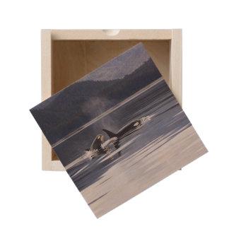 Killer Whales Wooden Keepsake Box