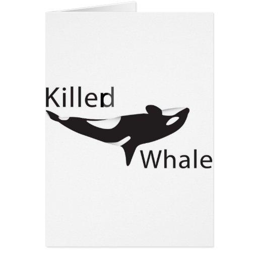 Killerd Whale Cards