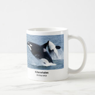 Killerwhale and Orcinus orca Coffee Mug