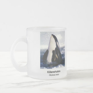 Killerwhale and Orcinus orca Frosted Glass Coffee Mug