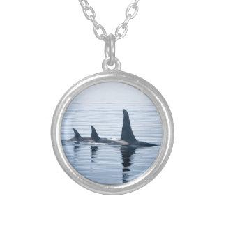 Killerwhale de la isla de Vancouver Colgantes