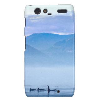 killerwhale de la isla de Vancouver Droid RAZR Funda