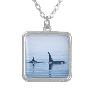 killerwhale o orca de la isla de Vancouver Pendientes Personalizados