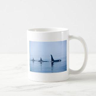 killerwhale o orca de la isla de Vancouver Taza Básica Blanca