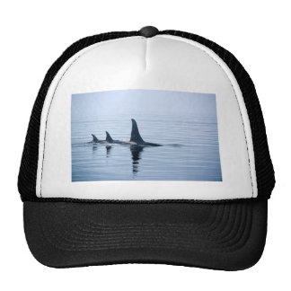 Killerwhale of Vancouver Island Trucker Hat