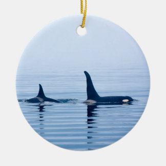 killerwhale or Orca of Vancouver Island Christmas Ornaments