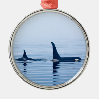 killerwhale or Orca of Vancouver Island Christmas Tree Ornaments