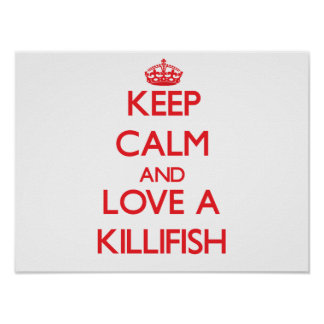 Killifish Posters