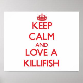 Killifish Poster