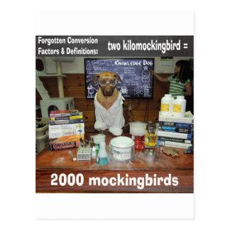 Kilomockingbird olvidado perro de la conversión postal