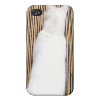 Kimba: Stretch Cover For iPhone 4