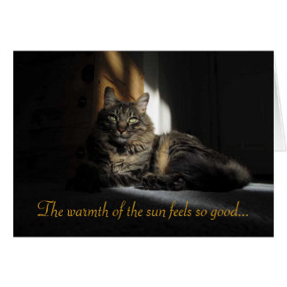 Kimber Cat Slivers of Sunlight I Love You Card