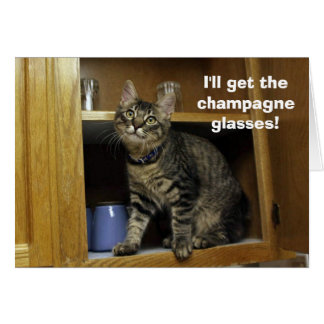 Kimber in the Cupboard Anniversary Card