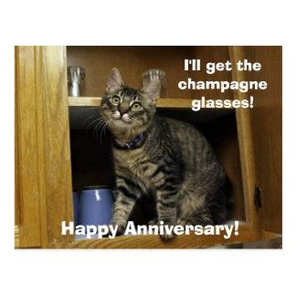Kimber in the Cupboard Anniversary Postcard