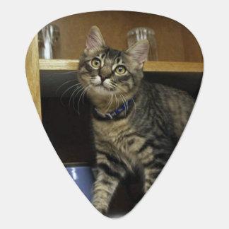 Kimber Kitty Guitar Pick