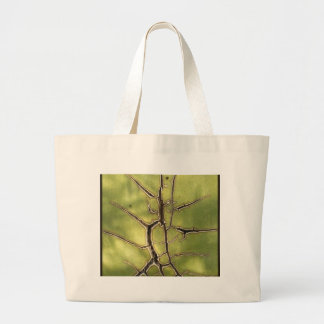 Kind of agave 3 canvas bags
