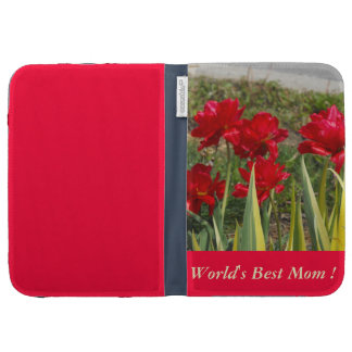 "kindle case    ""World's best Mom"""