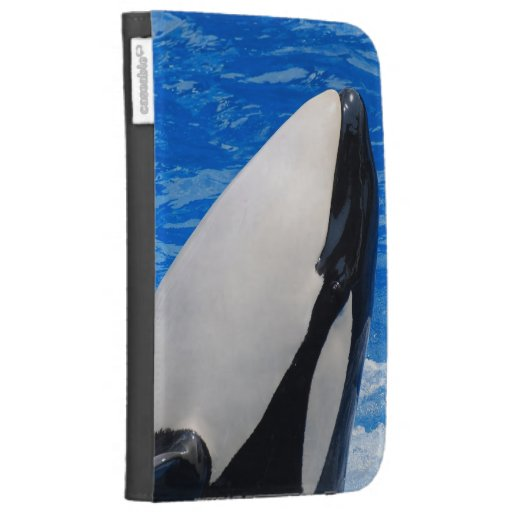 Kindle Cover - Customized
