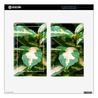 Kindle Fire Skin - Tricolored Caricature Plant