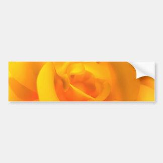 Kindled Rose Bumper Sticker