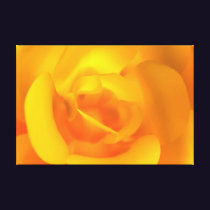 Kindled Rose Canvas Print