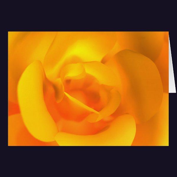 Kindled Rose Card
