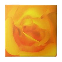 Kindled Rose Decorative Tile / Trivet