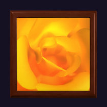Kindled Rose Gift Box