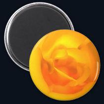 Kindled Rose Magnet