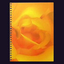 Kindled Rose Notebook